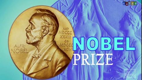Giải Nobel kinh tế 2021: Phương án giải những bài toán nghiên cứu chính sách xã hội