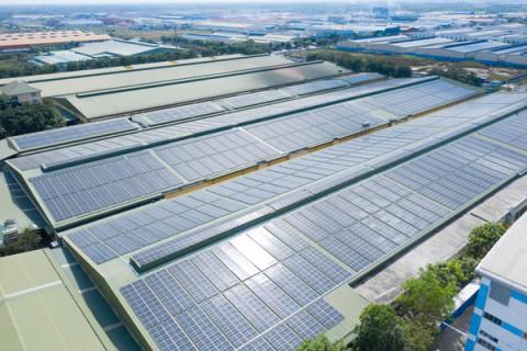 Tập đoàn Xây dựng Hòa Bình và doanh nghiệp Scotland cùng phát triển năng lượng tái tạo