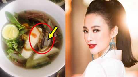 Có thể cấm hoạt động nghệ thuật với Angela Phương Trinh