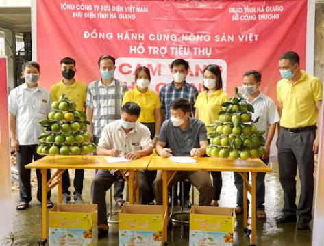 Hà Giang: Tuần lễ cam Vàng và nông sản huyện Bắc Quang